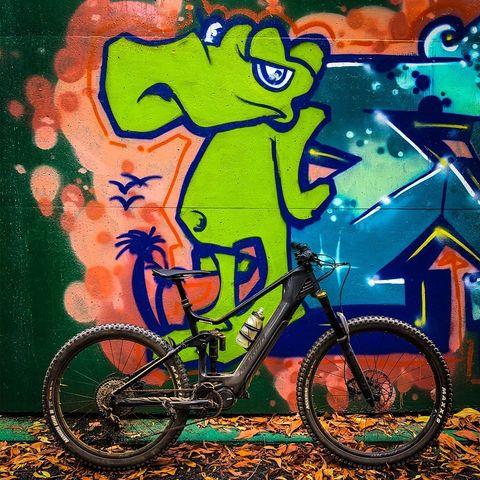 Cairns Mountain Bike Tours