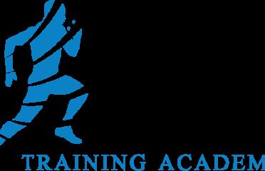 Next Level Training Academy